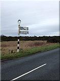 NY0846 : Signpost, Mawbray by Richard Thomas