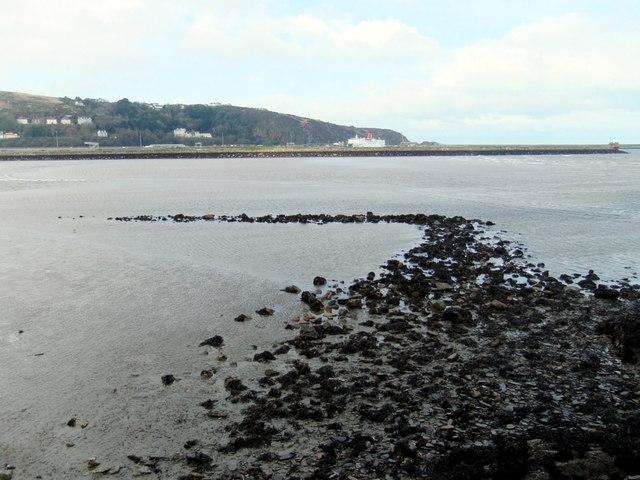 The SE fish trap in Fishguard Bay (3)