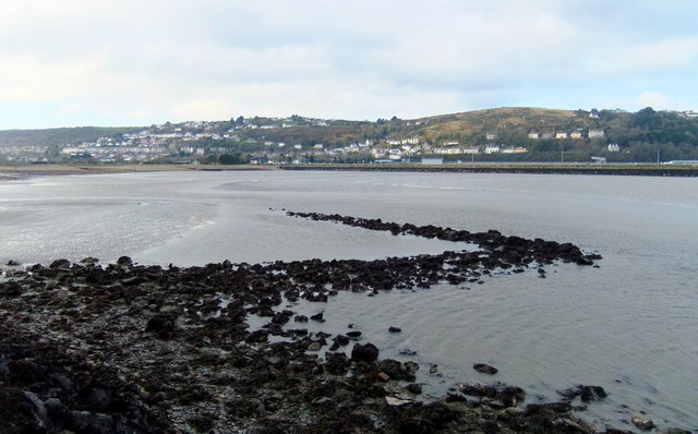 The SE fish trap in Fishguard Bay (4)