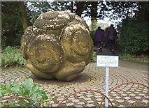 SX7962 : Jacob's Pillow, Dartington Hall Gardens by Derek Harper