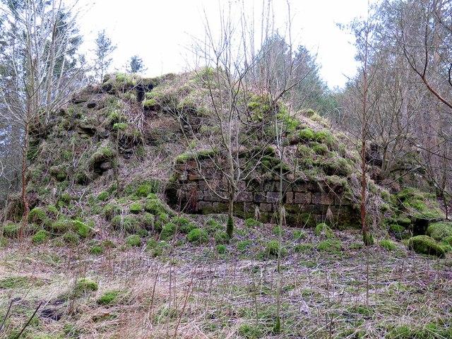 Remains of Simonburn Castle