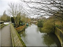 TQ1579 : Hanwell, River Brent by Mike Faherty