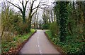 SP3509 : Cycleway and footpath. Witney, Oxon by P L Chadwick