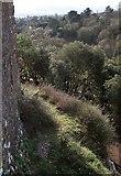 SX9065 : Edge of cliff, St Michael's Chapel, Torre by Derek Harper