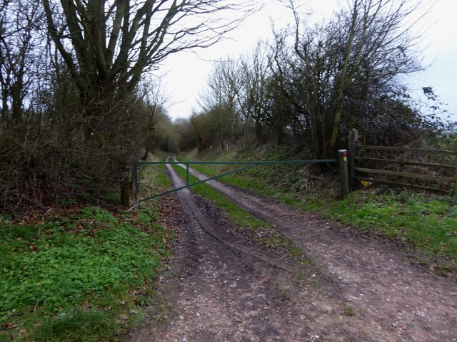 New Plantation farm track