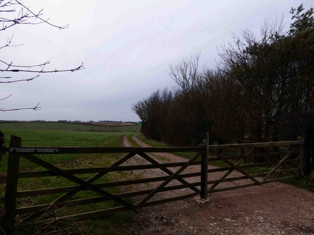 Gated track to Black Plantation