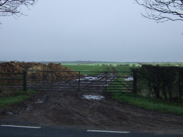 Gated farm track off Bridlington Road (A165)