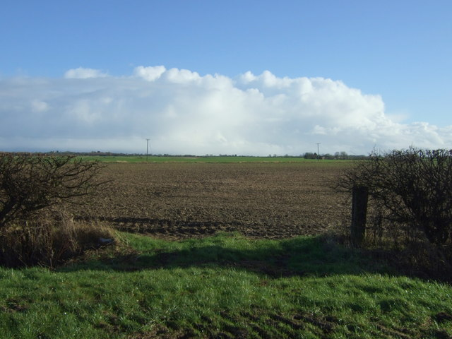 Field entrance off Lissett Lane (A165)