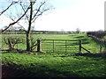 TA1458 : Field entrance off Fisher Lane by JThomas
