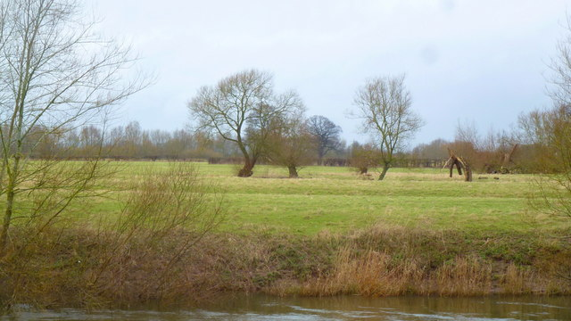 The Wye flood plain at Holme Lacy