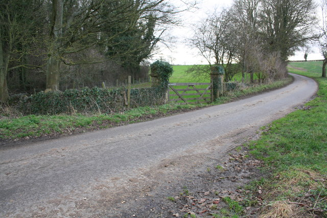 Minor road south of Gagingwell at junction of field and woodland