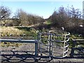 NZ2884 : Metal kissing gate by Russel Wills