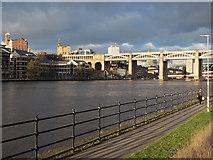 NZ2463 : River Tyne by Trevor Littlewood