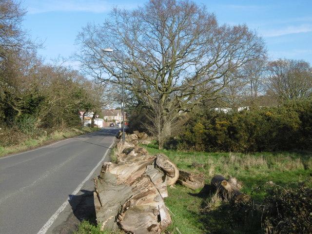 West Heath Road across Bostall Heath