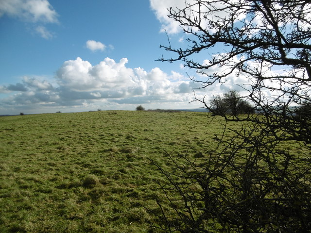 Hod Hill, site of Roman fort