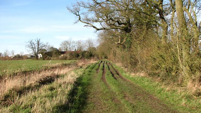 Drainage ditch beside Howe Lane
