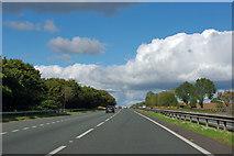 SE4389 : A19 heading north near Borrowby by Robin Webster