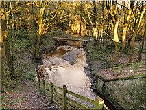 SD4806 : River Tawd, Skelmersdale by David Dixon