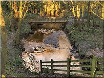 SD4806 : Footbridge over River Tawd at Skelmersdale by David Dixon