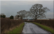 SJ6984 : Crabtree Lane by Ian Greig