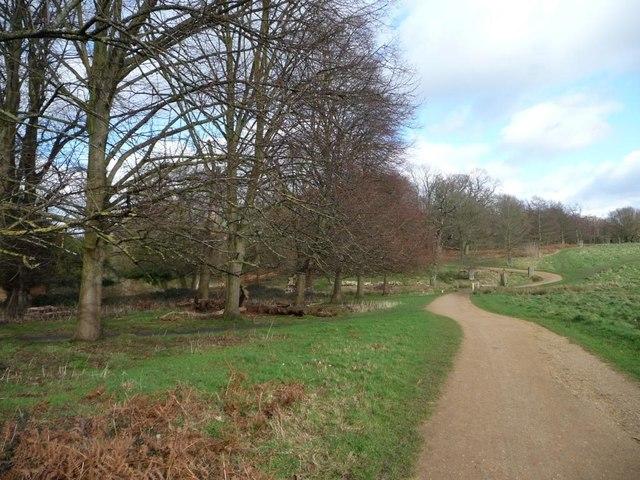 Path skirting Bishop's Lodge Pond