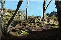 SX9065 : Limestone slope, Chapel Hill Pleasure Grounds by Derek Harper