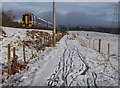 NH8810 : Train, sheep, and snow, by the Speyside Way by Craig Wallace