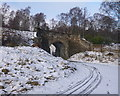NH8911 : Track under the railway, on the Speyside Way by Craig Wallace