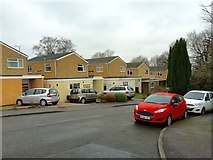 TQ8833 : Wrights Close, Tenterden by Chris Whippet