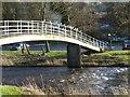 NU0501 : Footbridge between Rothbury and the carpark by Russel Wills