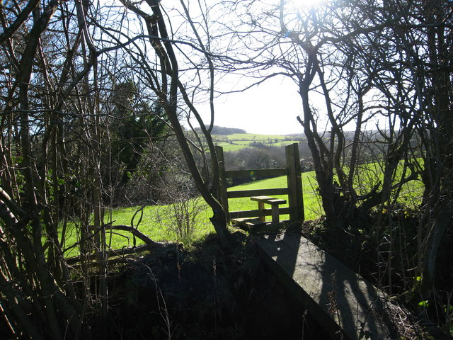 Footbridge and stile on footpath through grazing fields