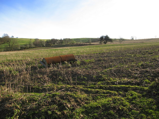 Abandoned agricultural roller in field of swedes