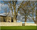 SK9913 : Churchyard wall and trees, Pickworth by Alan Murray-Rust