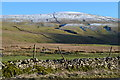 SD9480 : Snow above Bishopdale Head by David Martin