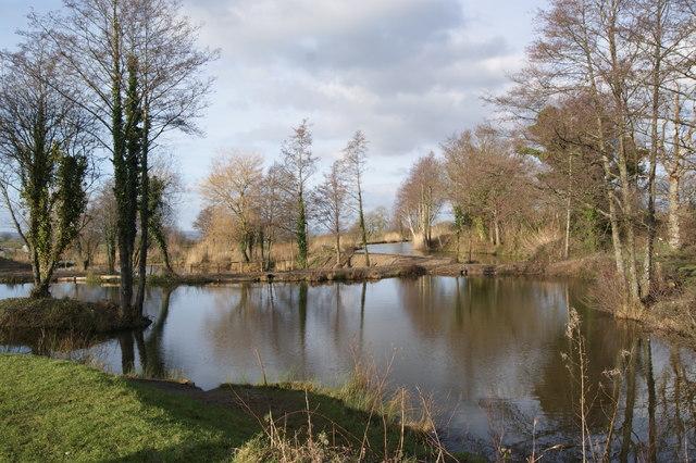 Fishing lakes at Revels
