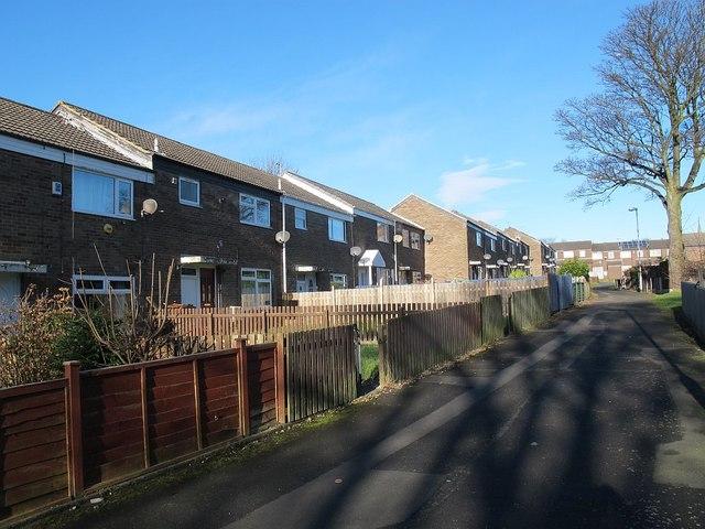 Backs of houses on Rossefield Grove, Bramley