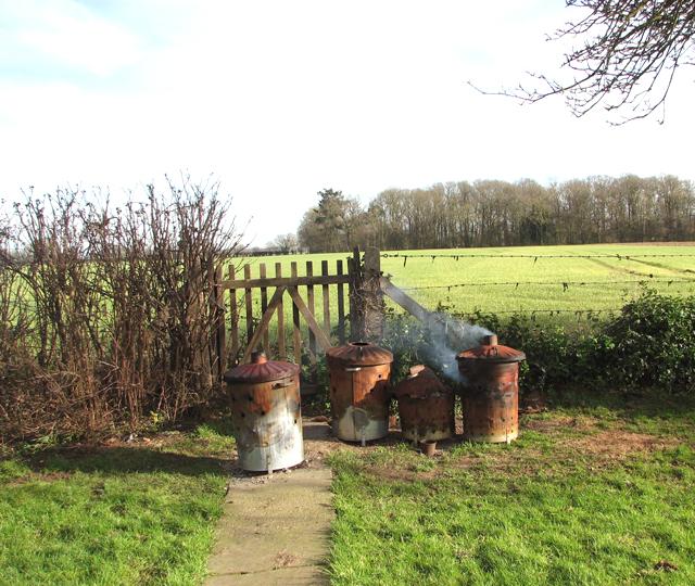Old garden gate