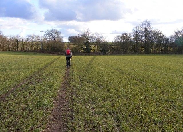 Dingle Path