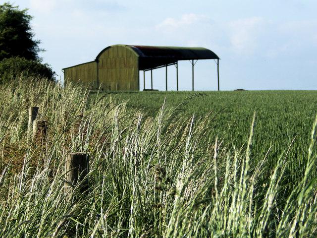 Dutch Barn on Tottens Down