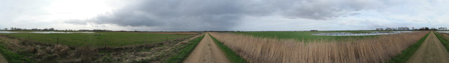 Panorama at Willow Tree Fen
