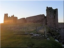NU2521 : Dunstanburgh Castle from south-east by Andrew Curtis