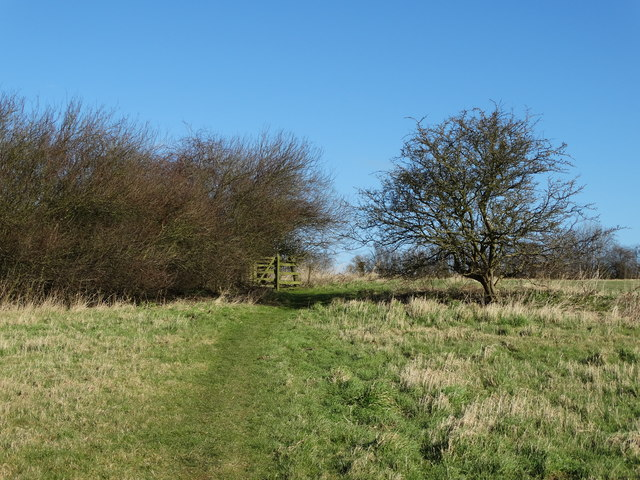 The path to Middlegate Lane from Worlaby