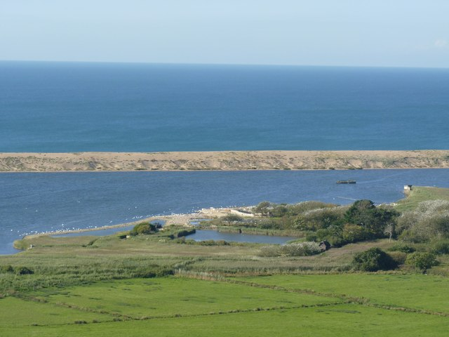 Abbotsbury Swannery from the north