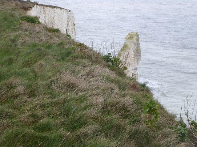 Sea stack at The Pinnacles