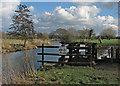 TM0633 : Dedham Old River Weir by John Sutton