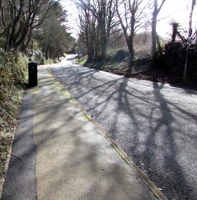Tree shadows on Church Road, Johnston