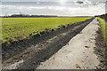 SK9275 : Bridleway towards Odder Farm by Julian P Guffogg