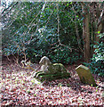 TG1602 : Dog graveyard in Ketteringham Park by Evelyn Simak