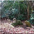 TG1602 : Dog graveyard in Ketteringham Park by Evelyn Simak