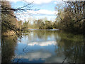 TG1602 : View across the lake at Ketteringham Hall by Evelyn Simak